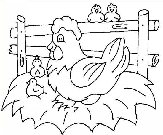 نقاشی مرغ و جوجه