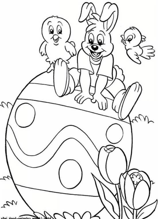 نقاشی خرگوش و جوجه