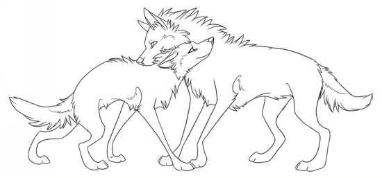 نقاشی جذاب گرگ