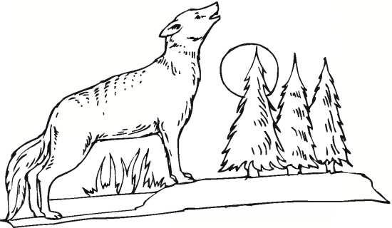 نقاشی جنگل و گرگ