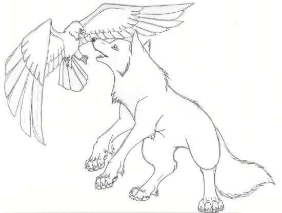 نقاشی عقاب و گرگ برای کودکان