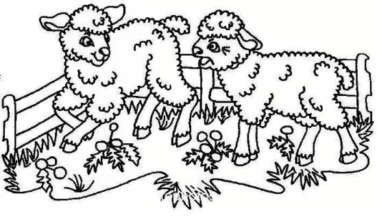 نقاشی گوسفندان بازیگوش