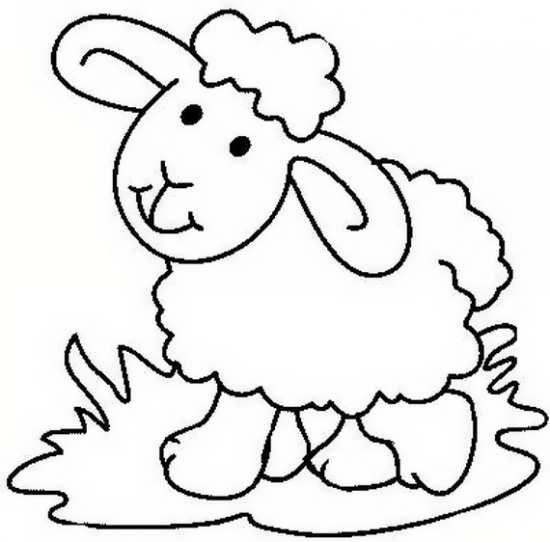 نقاشی های گوسفند