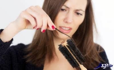 خواص نخود فرنگی برای مو