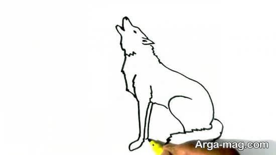 طراحی گرگ با رنگ آمیزی جالب