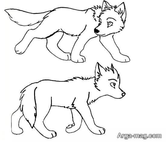 طراحی گرگ با رنگ آمیزی متفاوت