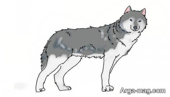 طراحی دوست داشتنی حیوان گرگ