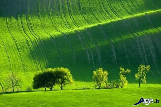تصویر زیبای طبیعت