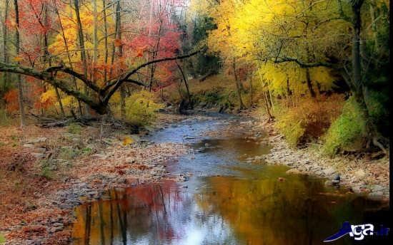 تصویر زیبای پاییزی
