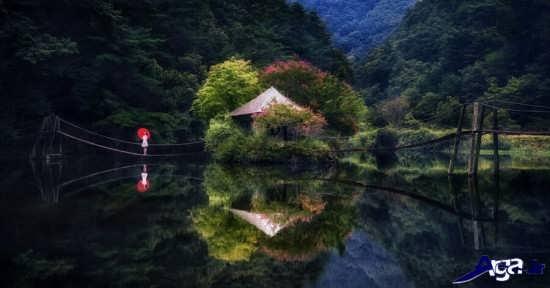 عکس زیبای تنهایی
