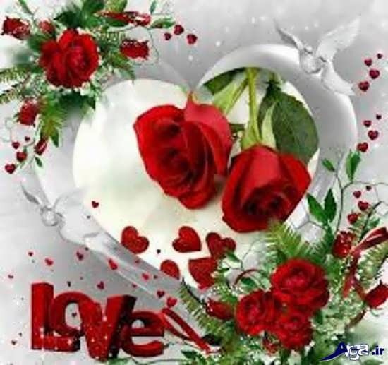 گل زیبا و رمانتیک عاشقانه