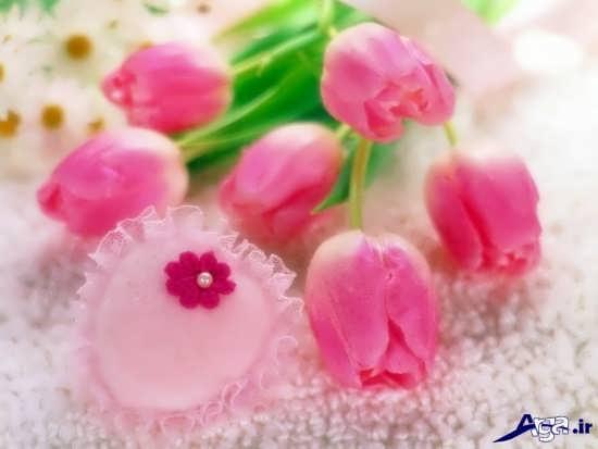 عکس های زیبای گل عاشقانه