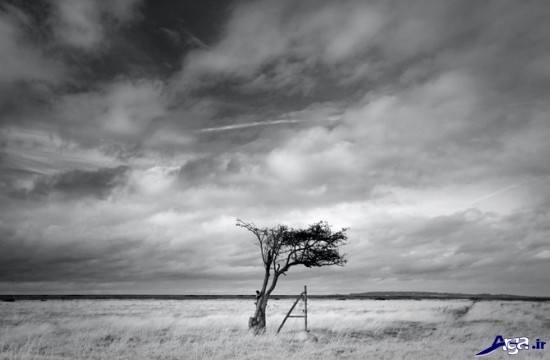 عکس مدرن سیاه و سفید