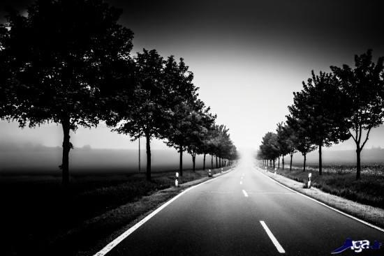 عکس های بسیار زیبای سیاه و سفید