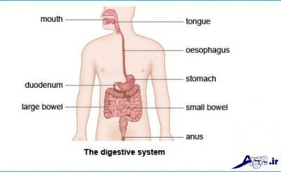 gastro_indigestion