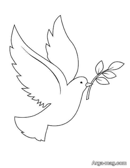 رنگ آمیزی پرنده