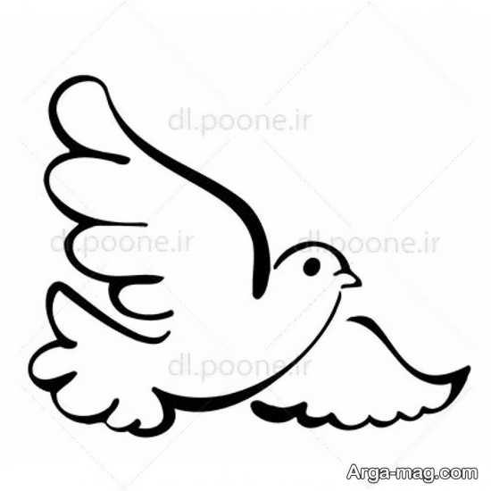 طراحی پرنده زیبا