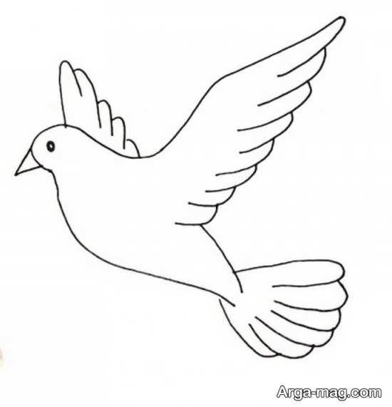 تصاویری از نقاشیهای پرنده