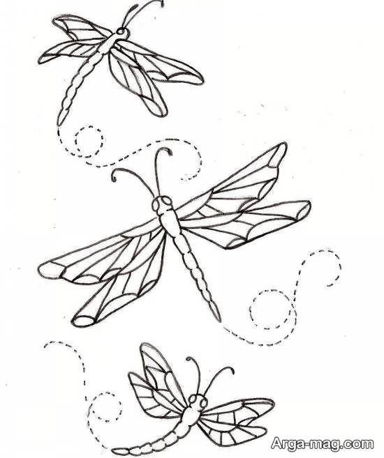 طرحی از پروانه برای گلدوزی