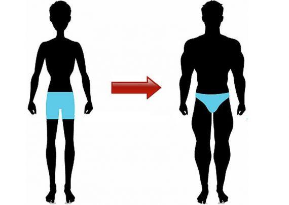 چگونه چاق شویم