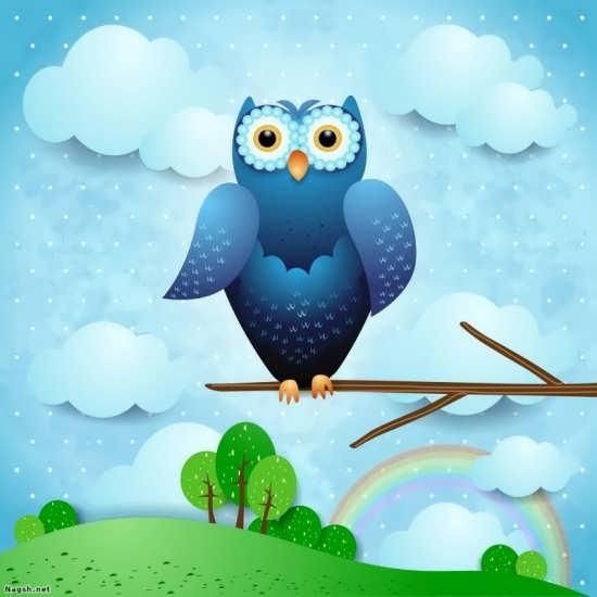 رنگ آمیزی نقاشی پرنده