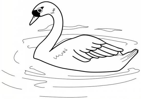 نقاشی زیبا پرنده برای رنگ آمیزی کودکان