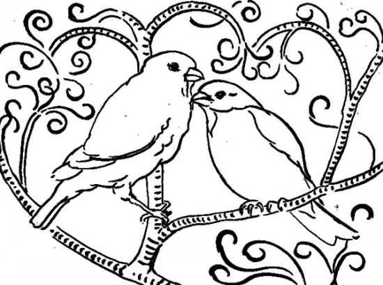 نقاشی پرنده های دوست داشتنی برای رنگ آمیزی کودکان