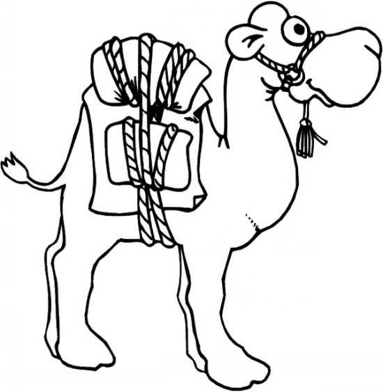 نقاشی های شتر با انواع طرح های فانتزی و جالب