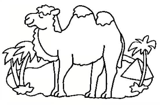 نقاشی صحرا و شتر