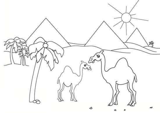 نقاشی شتر در صحرا برای رنگ آمیزی کودکان