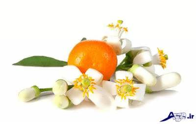 خواص درمانی بهار نارنج