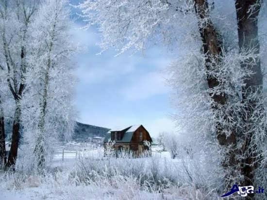 تصویر بسیار زیبا از زمستان