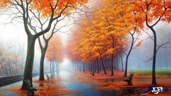 عکس مناظر زیبا در فصل پاییز
