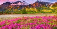 عکس مناظر زیبا از طبیعت