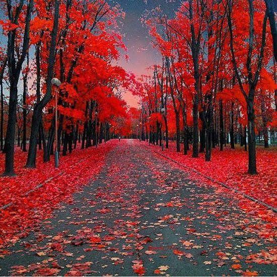 عکس های زیبا از طبیعت خداوند
