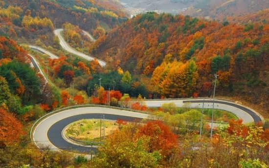 عکس زیبا و جذاب جاده پاییزی