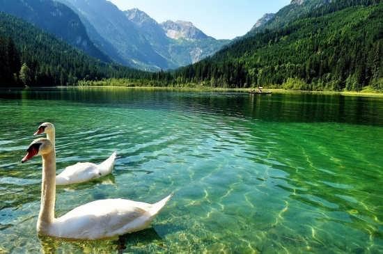 انواع عکس و تصاویر زیبا از دریاچه