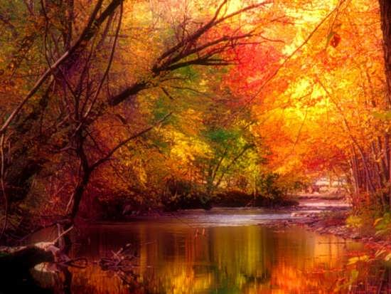 انواع عکس زیبا از طبیعت در فصل پاییز