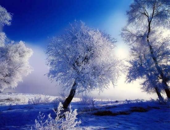 عکس زیبا از زمستان