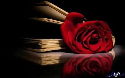 جملات عاشقانه جدید و زیبا