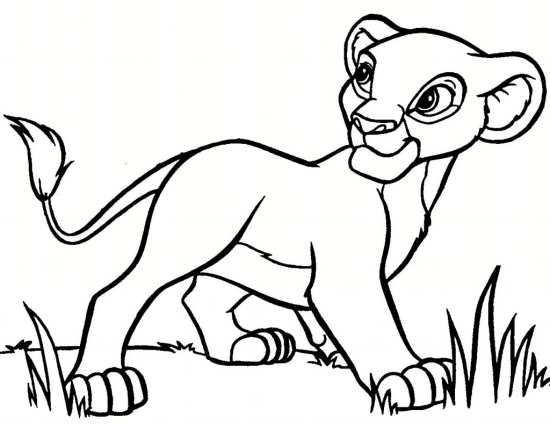 نقاشی حیوانات با طرح های فانتزی