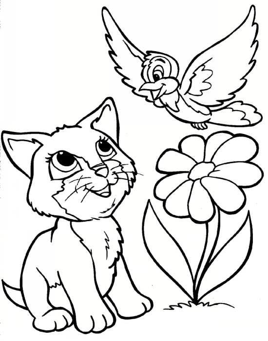 نقاشی های مختلف و زیبا از حیوانات