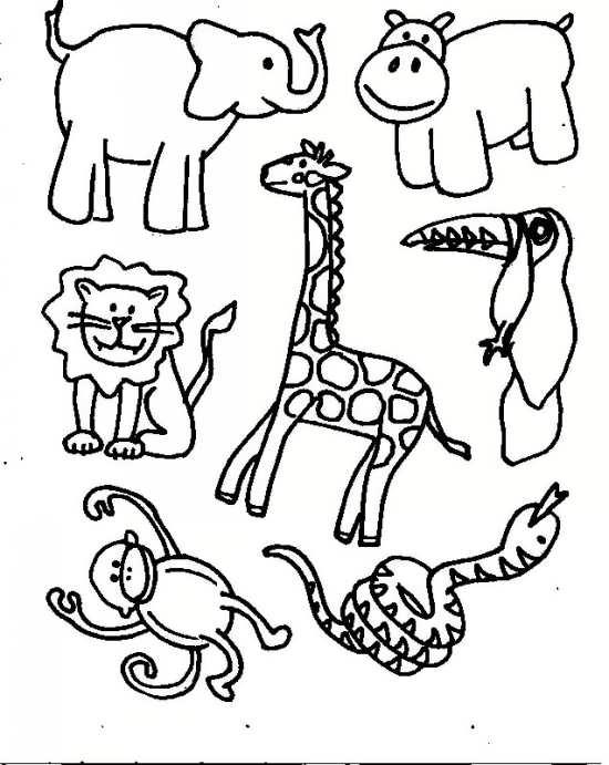 نقاشی حیوانات مختلف با طرح های زیبا و متفاوت
