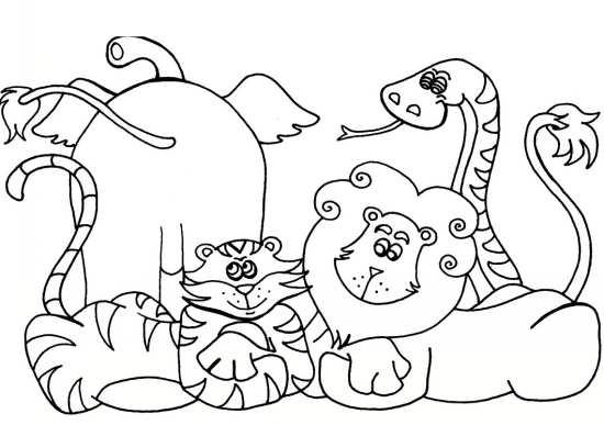 نقاشی حیوانات با طرح های زیبا و جذاب