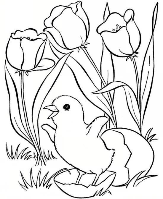 نقاشی گل برای کودکان باهوش