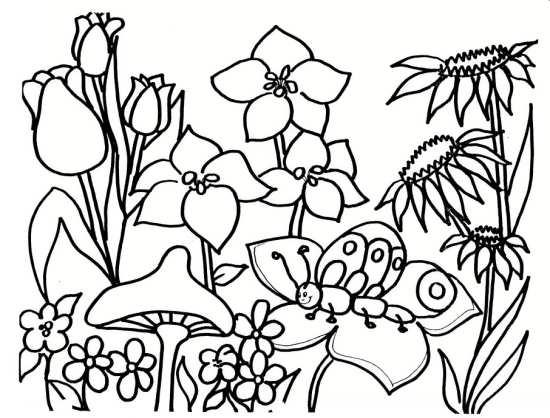 نقاشی زنبور عسل و گل