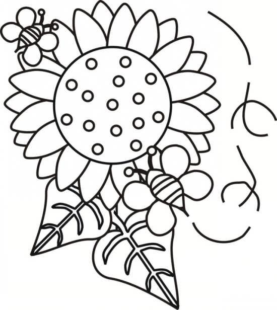 نقاشی گل برای کودکان با انواع رنگ آمیزی های جالب و جدید