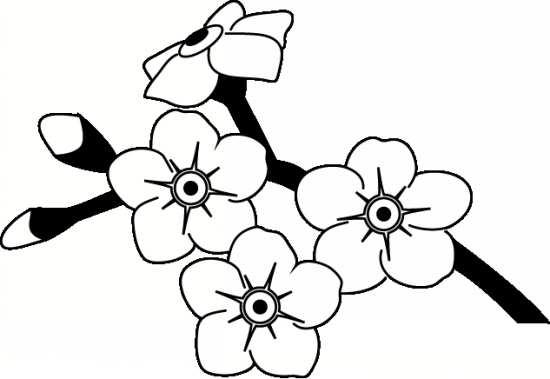 نقاشی گل برای رنگ آمیزی کودکان باهوش و زرنگ