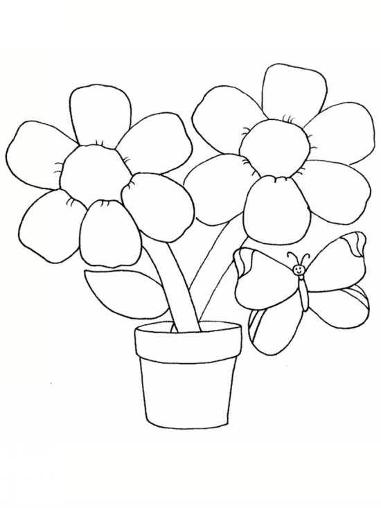 نقاشی پروانه و گل برای رنگ آمیزی کودکان