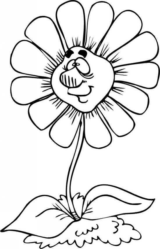 نقاشی گل های زیبا برای رنگ آمیزی